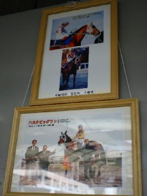 10名馬紹介-1