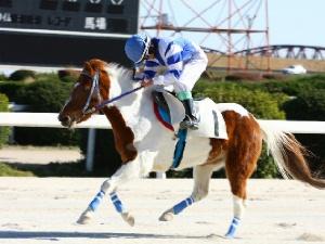 10R Sクラス決勝 ポニーカップGCS 優勝 辻加武斗くん&フラワーカンパニー号 2