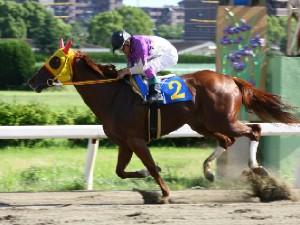 110624名古屋でら馬スプリント 優勝 ラブミーチャン