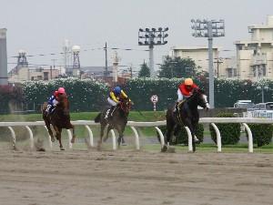 110728川崎2R2歳新馬2イ 最後の直線