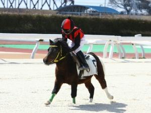 1R Cクラス予選1 4着 塚本凌太くん&カケル号.jpg