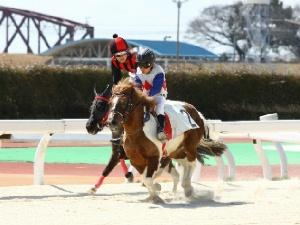 2R Bクラス予選1 2着 木下幹太くん&ブランノワール号(赤黒帽).jpg