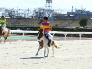 8R Bクラス決勝 6着 大野木なつきちゃん&ドリーム号.jpg