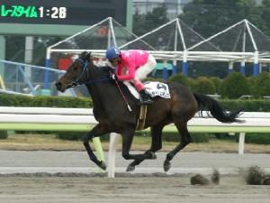 内田利雄騎手-090121-大井6R-ヤマジュンギンガ-8.jpg