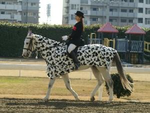 川崎の誘導馬 カゥくん トーチくんVer 2