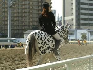 川崎の誘導馬 カゥくん トーチくんVer 6