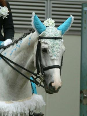 川崎の誘導馬6月紫陽花 昼Ver3