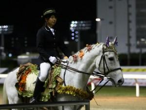 川崎競馬の誘導馬