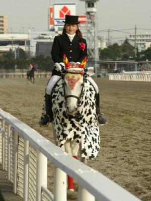 川崎競馬の誘導馬 カゥくん ユーちゃんVer2