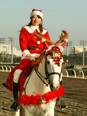 川崎競馬の誘導馬 クリスマス 2頭Ver 4