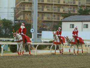 川崎競馬の誘導馬 トナカイ 3頭立てVer 2
