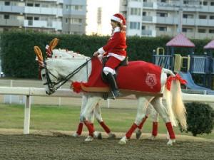 川崎競馬の誘導馬 トナカイ 3頭立てVer 4