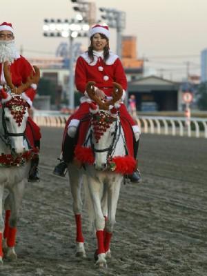 川崎競馬の誘導馬 トナカイ 3頭立てVer 6