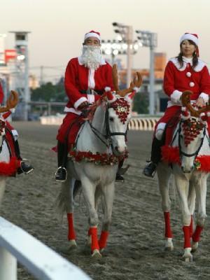 川崎競馬の誘導馬 トナカイ 3頭立てVer 8