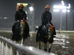 川崎競馬の誘導馬 10月開催 ハロウィン重賞Ver