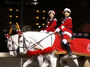 川崎競馬の誘導馬 12月開催 xmas 2頭立てVer 3