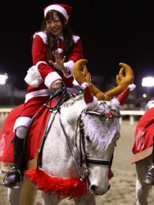 川崎競馬の誘導馬 12月開催 xmas 2頭立てVer 6