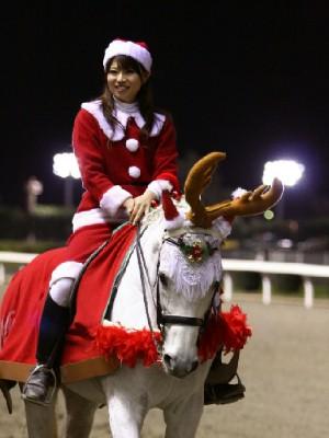 川崎競馬の誘導馬 12月開催 xmas サンタ付き3頭立てVer 2