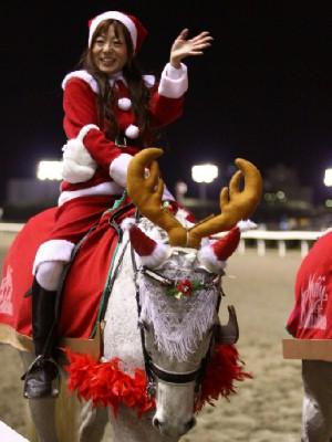川崎競馬の誘導馬 12月開催 xmas サンタ付き3頭立てVer 4