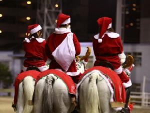 川崎競馬の誘導馬 12月開催 xmas サンタ付き3頭立てVer 5