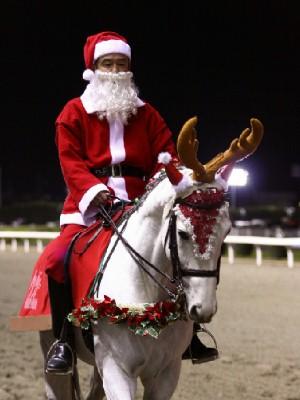 川崎競馬の誘導馬 12月開催 xmas 3頭立てVer2 3