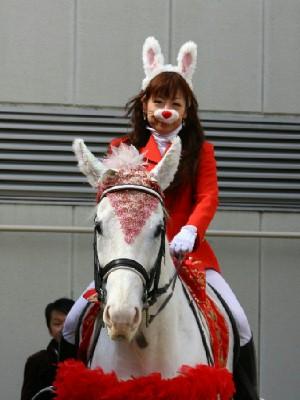 川崎競馬の誘導馬 3月開催 うさぎ&ひな祭りVer 1