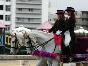 川崎競馬の誘導馬 3月開催 重賞Ver 2