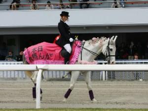 川崎競馬の誘導馬 4月開催 桜Ver シロくん 5.jpg