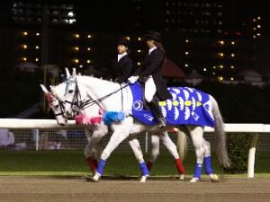 川崎競馬の誘導馬 5月 重賞Ver 1