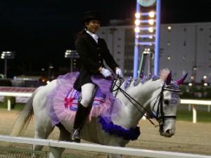 川崎競馬の誘導馬 5月開催 藤Ver アロワナくん 4