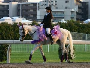 川崎競馬の誘導馬 5月開催 藤Ver ユーちゃん 3