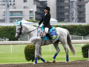 川崎競馬の誘導馬 6月開催 紫陽花 トーチくん 3