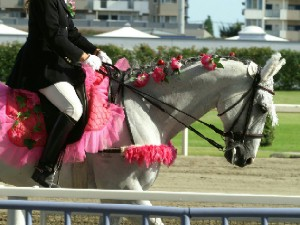 川崎競馬の誘導馬 7月前半開催 朝顔Ver トーチくん2