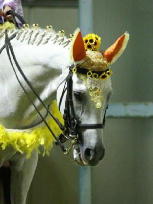 川崎競馬の誘導馬 8月前半 ひまわり 夜Ver2