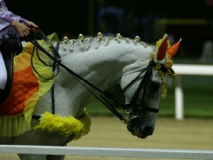川崎競馬の誘導馬 8月前半 ひまわり 夜Ver5