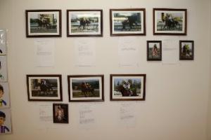 年度代表馬の写真展示
