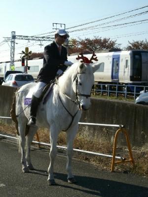 日本最高齢誘導馬 パクじぃ 1
