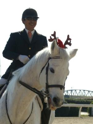 日本最高齢誘導馬 パクじぃ 4
