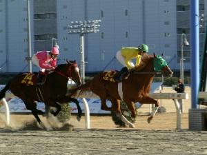 竹見カップ 第1戦 1周目ハナを切ったのは町田直希騎手