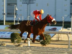 竹見カップ 第2戦 1周目ハナを切ったのは的場文男騎手