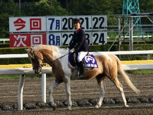 船橋競馬の誘導馬 2